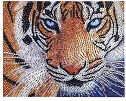 Очите на тигъра 24/19 см