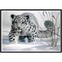Бял леопард 35/25 см
