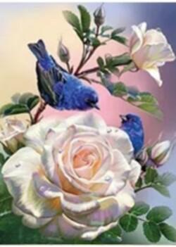 Рози и птичета 30/40 см