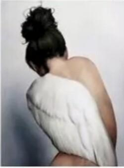 Крилото на ангела 40/50 см