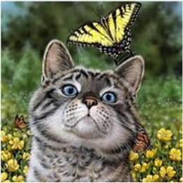 Коте и пеперуда