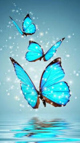 Пеперуди 30/40 см