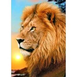 Цар лъв 30/40 см