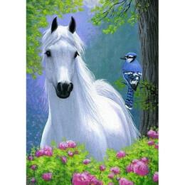 Бял кон и птиче