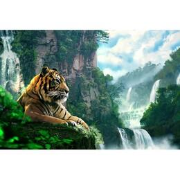 Тигър 60/40 см