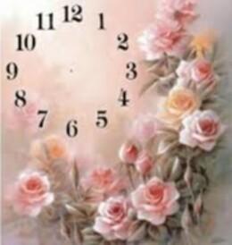 Рози 30/40 см