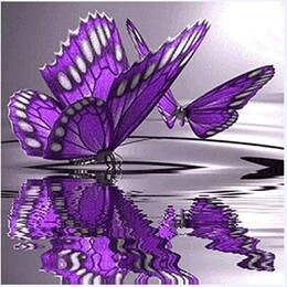 Пеперуди 30/30 см