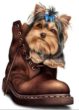 Кученце в обувка 20/25 см