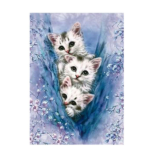 Три котета 30/40 см