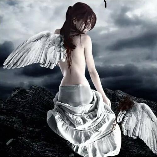Крилото на Ангела