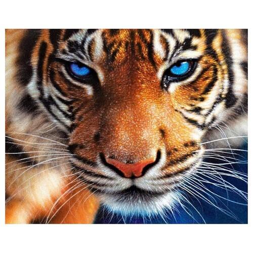 Очите на тигъра 30/30 см