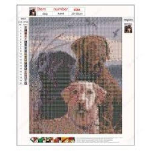 Кучета ловци 30/40 см