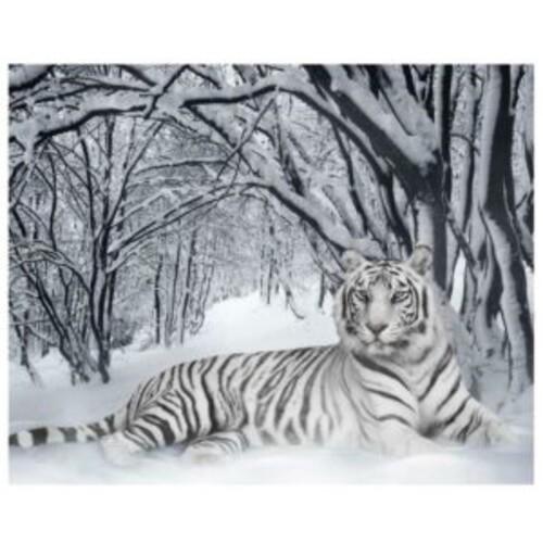 Тигър 40/30 см