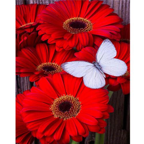Гербери и пеперуда 30/40 см