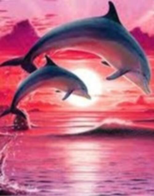 Делфини 25/35 см