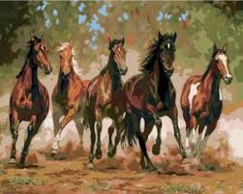 Диви коне 50/40 см