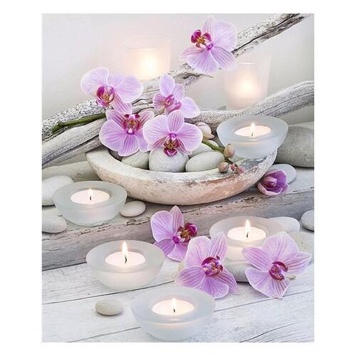 Орхидеи 23.5 см / 28 см