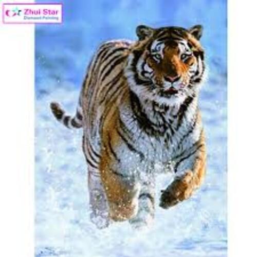Тигър в снега 40/50 см