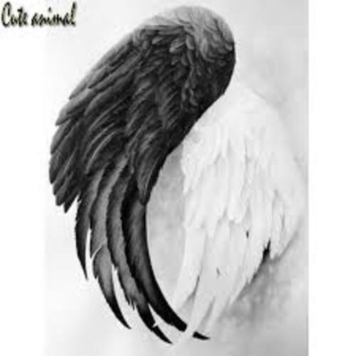 Ангелски крила 30/40 см