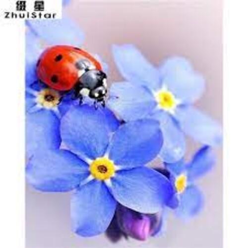 Калинка и цветя  30/40 см