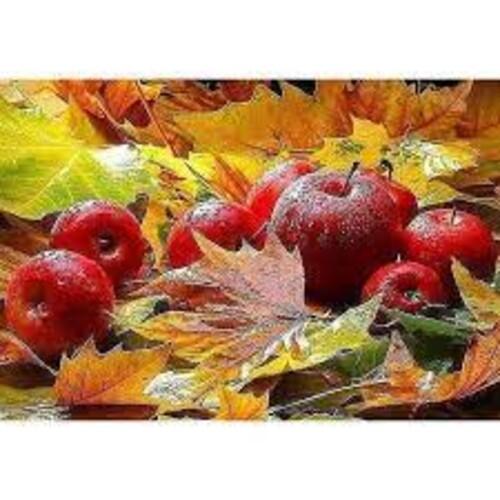 Златна есен 40/30 см